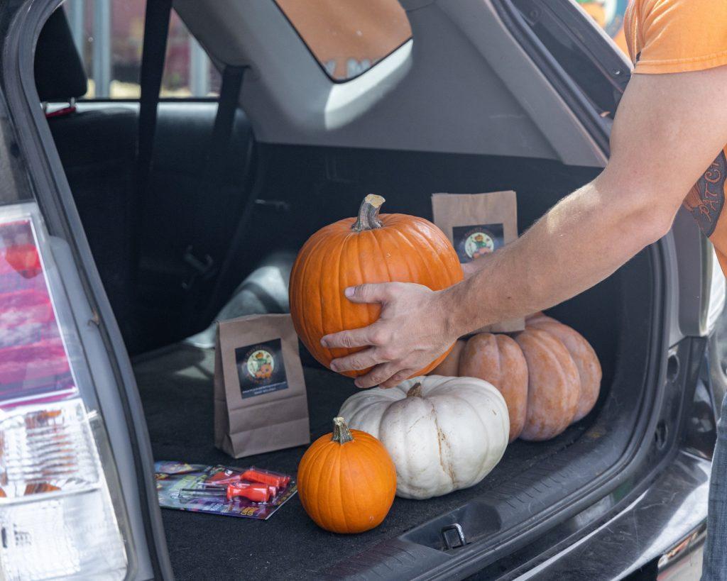 Pumpkins loaded in car